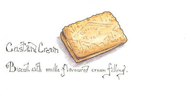how to draw a biscuit